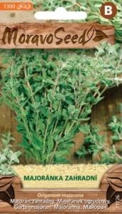 Majoránka zahradní - Origanum majorana