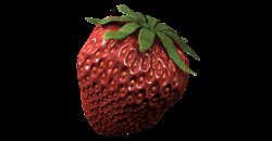 ATAMI ATA Organics Bio Bloombastic 1L