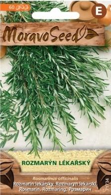 Rozmarýn lékařský - Rosmarinus officinalis