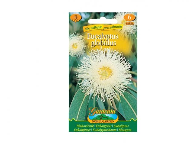 Blahovičník - Eucalyptus