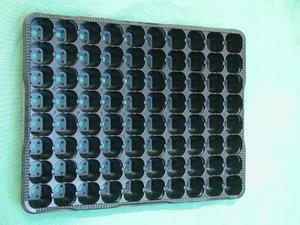 Sadbovač PE 80 sadbovacích kostiček