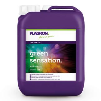 PLAGRON Green Sensation 5l, květový stimulátor
