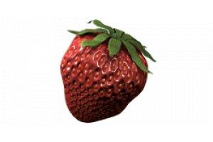 Homebox Ambient Q200+, 200x200x220cm
